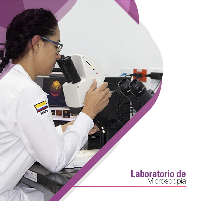 LABORATORIO DE MICROSCOPIA
